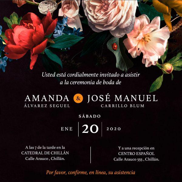 Modelo Amanda - Te Invito Online